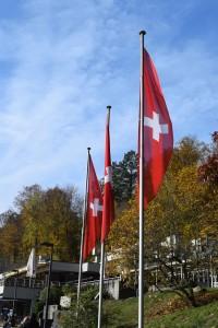 1029 Rheinfall Fahnen