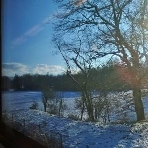 1125 Winterlandschaft